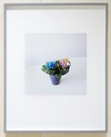62 x 51 cm. Framed